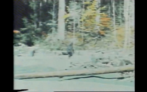 Bigfoot_2