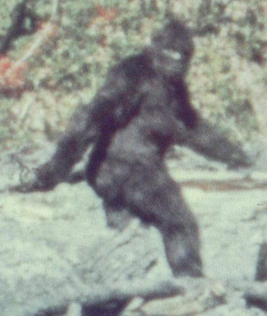 Bigfoot_3